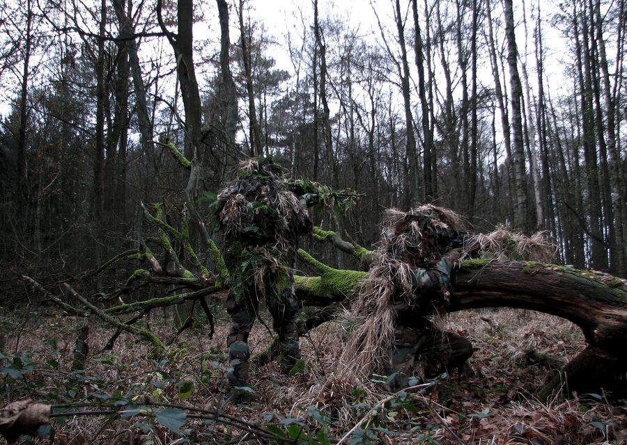 USMC and JGSDF Scout Snipers Conduct Stalk Training