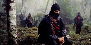 Inside the Radical Left: Organized Eco-Terror