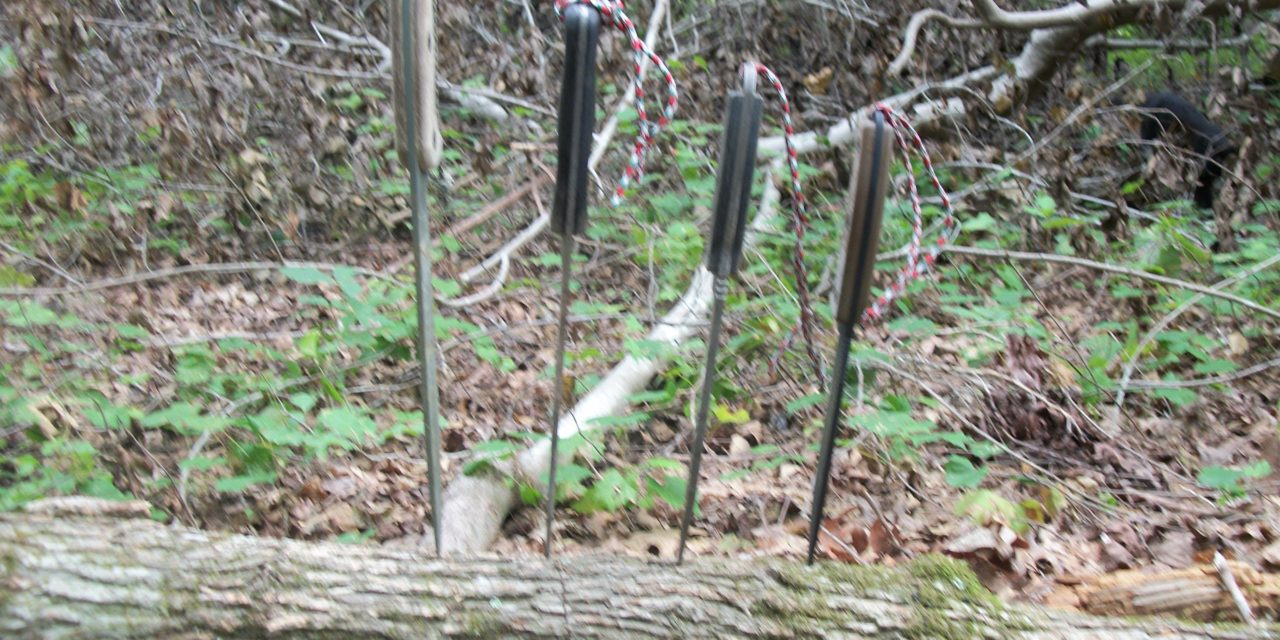 Big Blades and Surviving in the Southern Woodlands