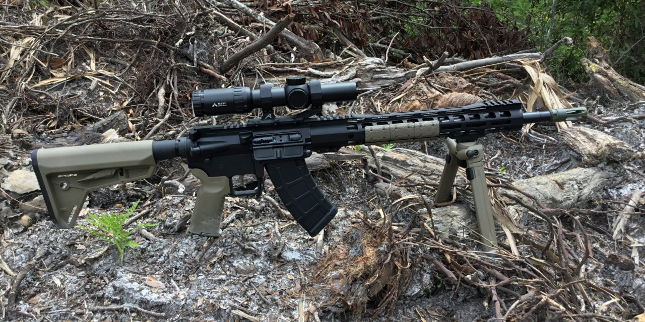 Palmetto State Armory 16″ KS-47 & Primary Arms 1-6x ACSS Scope – 7.62×39 DMR?
