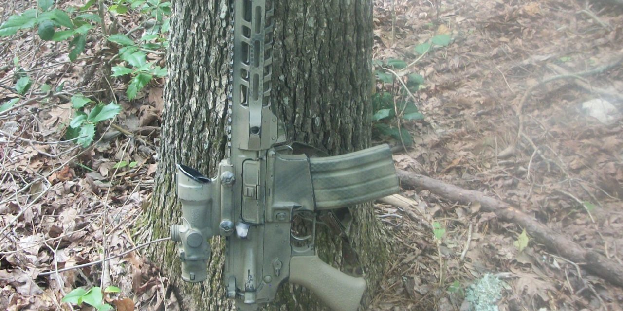 Fighting Carbine Course Review, by GA Bulldog
