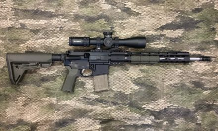 DMR/SPR update – initial accuracy.