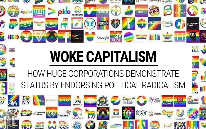 Ammo.com: Woke Capitalism: How Huge Corporations Demonstrate Status by Endorsing Political Radicalism