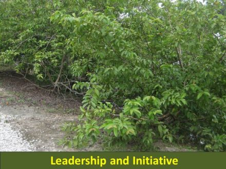 Sharpshooter Sends: An Article on Leadership and Initiative