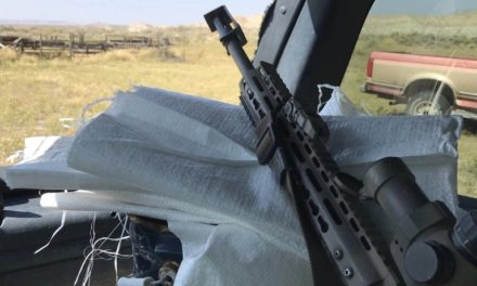 Badlands Fieldcraft: Gear Review: Primary Arms Platinum 1-8x ACSS Riflescope