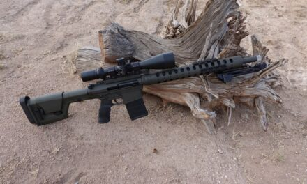D&L Precision AR10 Review, by Coyyote