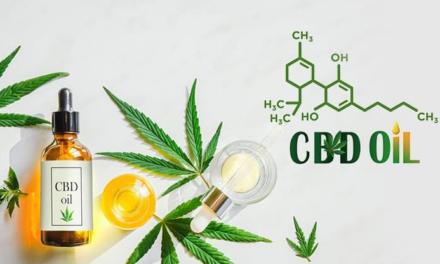 Canal Health: What Is CBD Oil? Uses Case, Health Benefits & More
