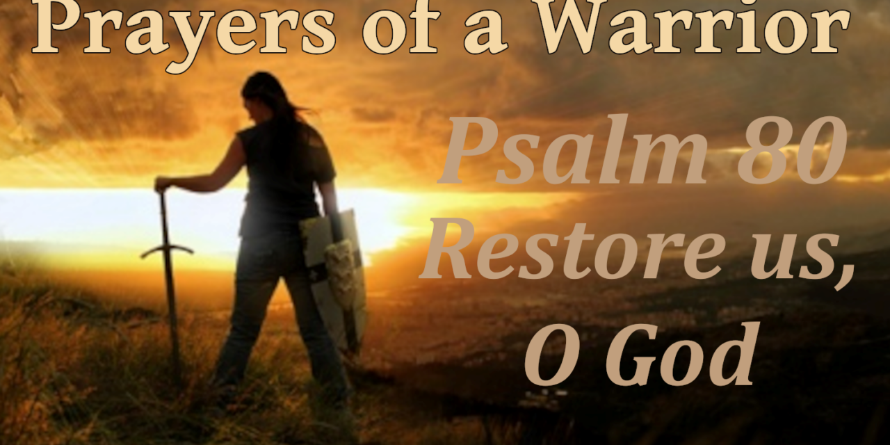 """""""Prayers of a Warrior"""": Psalm 80 – Restore us, O God, by CountrySlicker"""