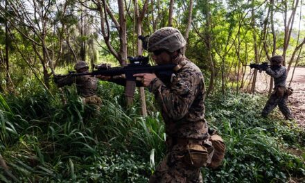 Military researchers ask industry to use climbing robots to create mesh network for jungle communications