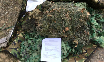 Field Training Notes – Recreating the Brushbeater Scout Course in Western NY/PA
