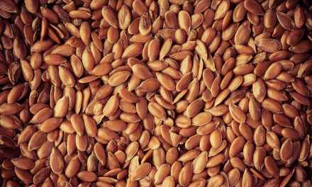 Seeds of life: Keep your food supply alive after SHTF
