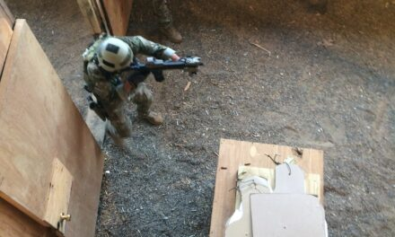 Lodestone Training and Consulting Sends: Shot Placement