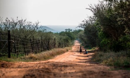 VIDEO: White farm murders in South Africa – Race hate, politics or greed? (2018)